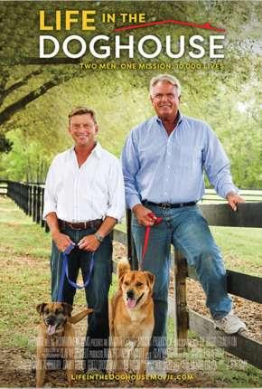 A Casa é Dos Cachorros - Legendado Download