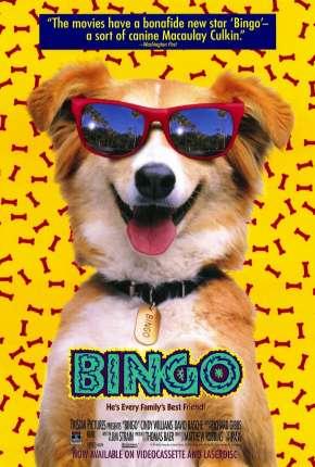 Bingo, Esperto pra Cachorro Download