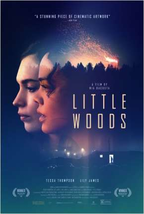 Little Woods - Legendado Download