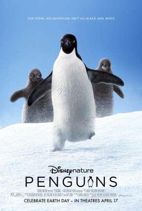 Penguins - Legendado Download