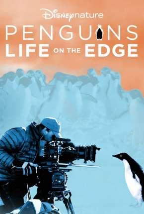 Pinguins - Vida ao Extremo Download