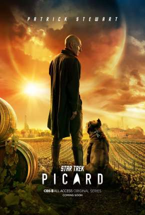 Star Trek - Picard - 1ª Temporada Download