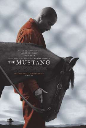 The Mustang Download