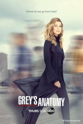 A Anatomia de Grey - 17ª Temporada Legendada Download