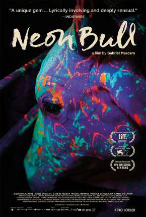 Boi Neon Nacional Download
