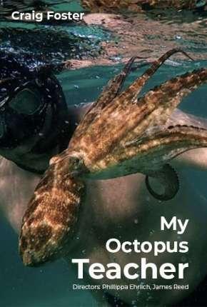Professor Polvo - Legendado Download